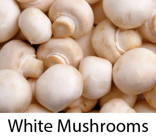 Mushrooms And Why Eating Them Is So Important For Your Health