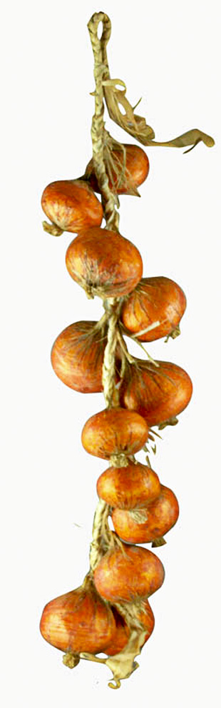 Onions And Why You Should Be Eating Them