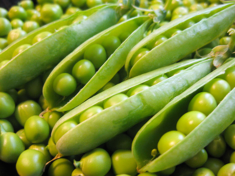 Green Peas Are Very Healthy! Are You Eating Enough Of Them?