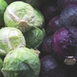 Cabbage - The Health Benifits Of Red And Green Cabbage